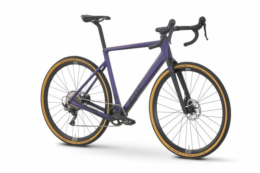 Rose Backroad 2020 deepest purple